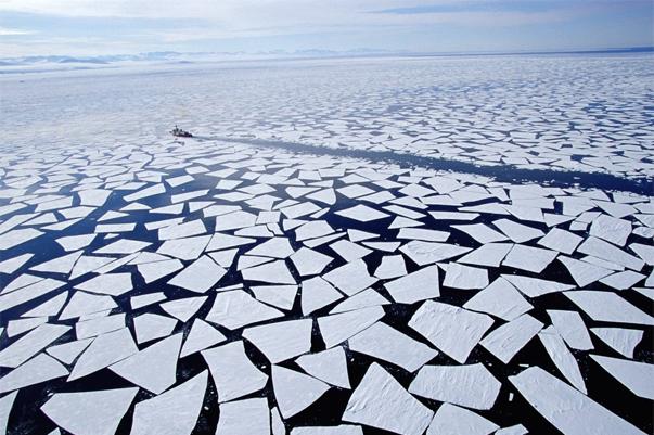 Картинки про арктические пустыни